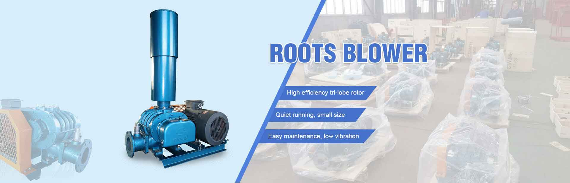 Roots Blower