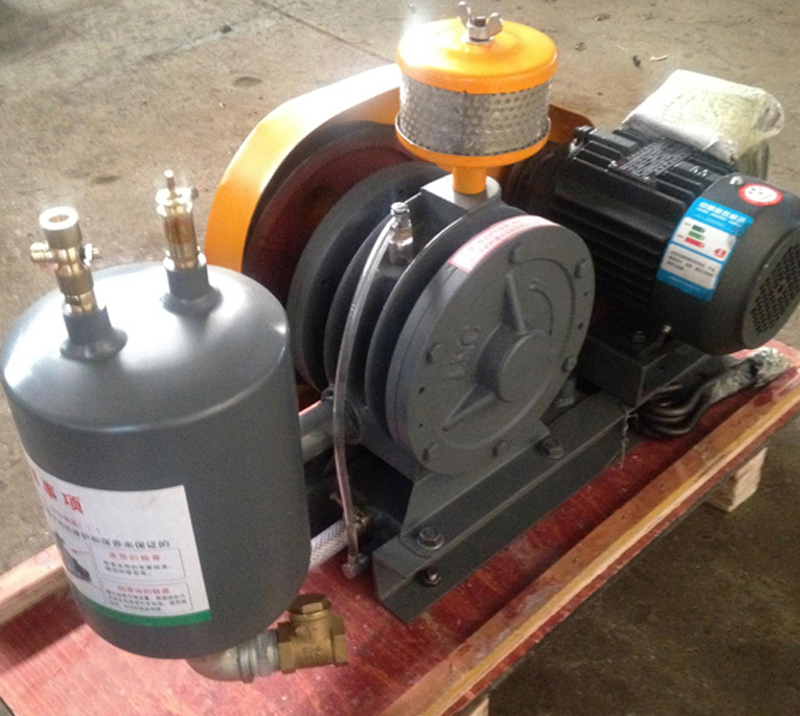 DH-80S rotary vane blowers manufacturer for shrimp farm - DH
