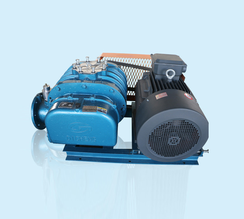 DSR125A Roots Blower