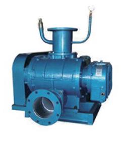 DSR-V Roots Vacuum Pump