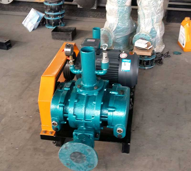 DSR100V Roots Vacuum Blower