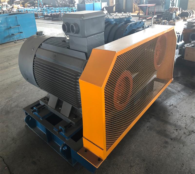 DSR65G  Air Pump for Water Treatment