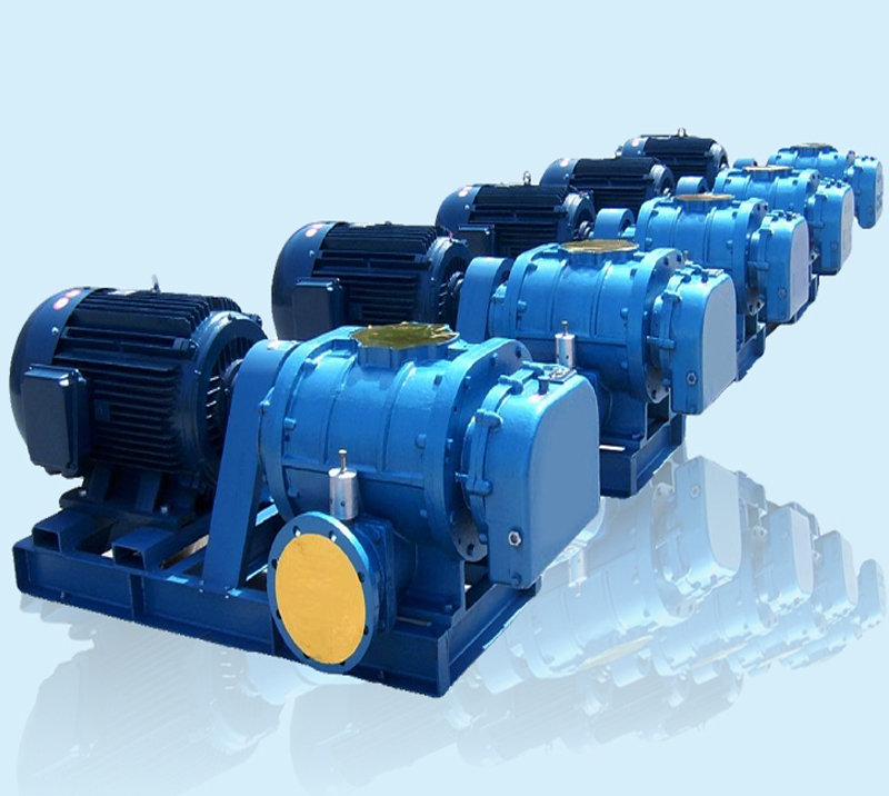 DSR100G Showell High Performance Blower for Aquaculture