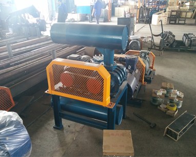 DSR300G Combustion-Supporting Equipment Roots Blower