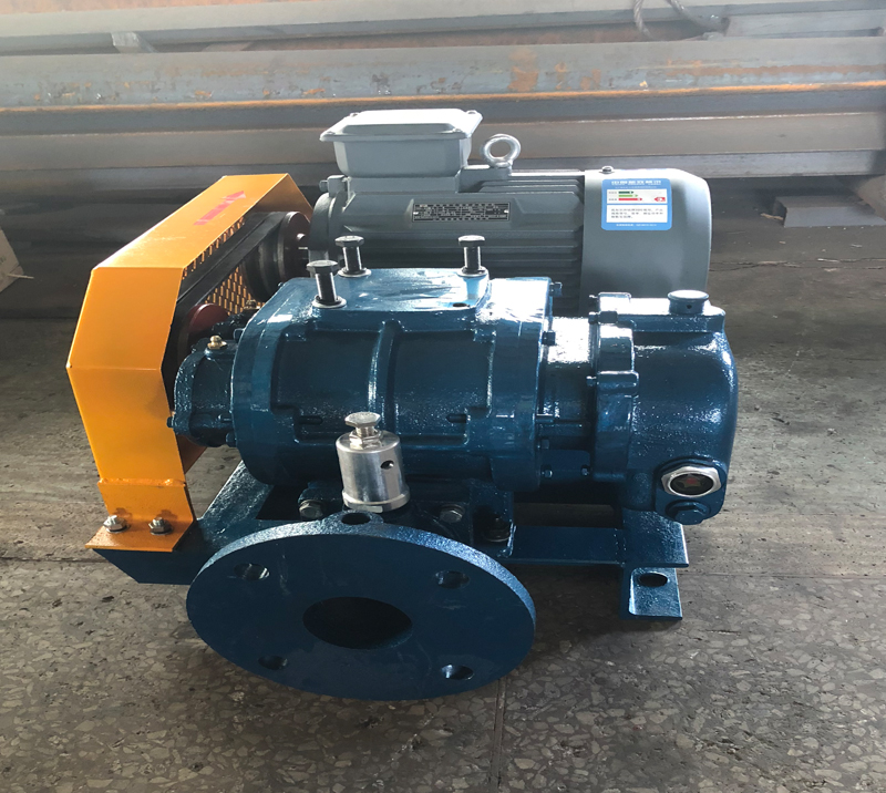 DSR350G Twin Lobe Roots Blower for Effluent Treatment