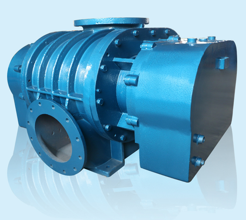 DSR65V Positive Displacement Vaccuum Pumps